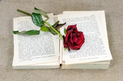 Book w rose credit dan free image yours in books